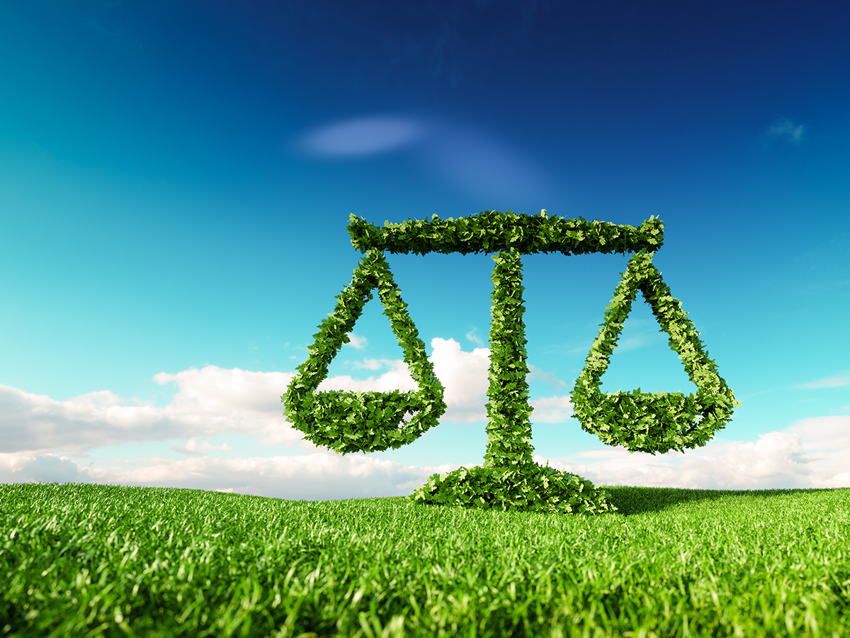 Hastings Environmental Law Journal: CEQA's Judicial Remedies and Reform Recommendations