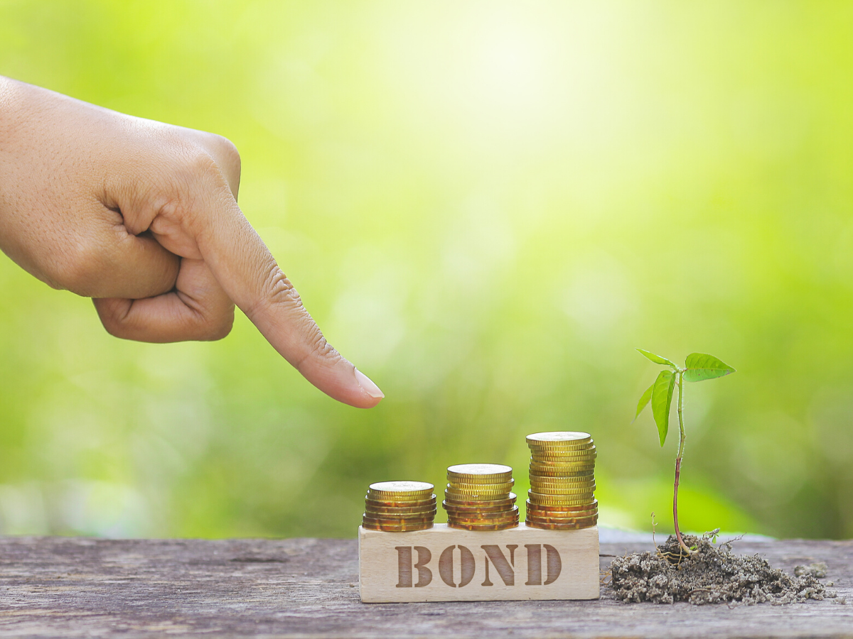 How Public Agencies Can Use Green Bonds to Finance Projects